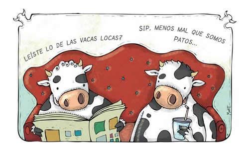 mascotasvacas_patos