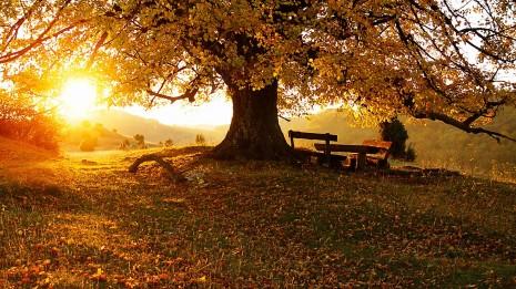 atardecer en otoño