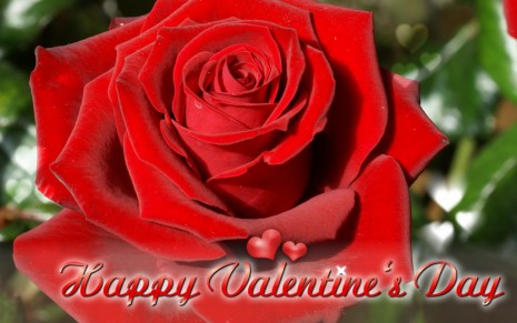 Happy-Valentines-Day-Nice-Pictures-5-1024x641