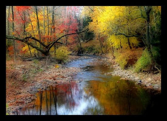 otoñopaisajes