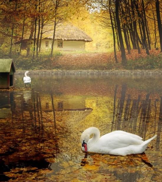 otoñopaisajes13