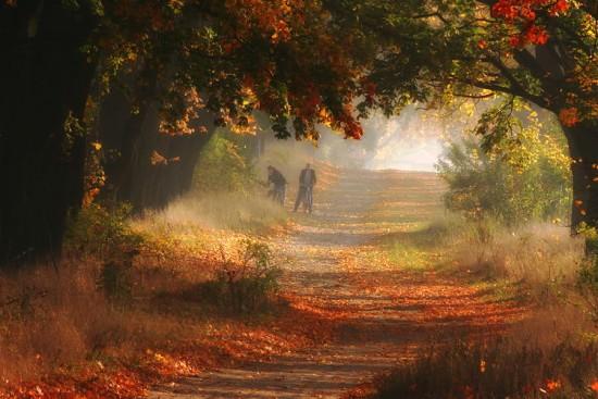 otoñopaisajes15