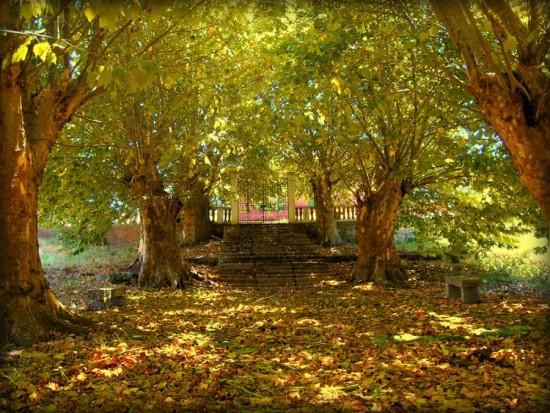 otoñopaisajes16
