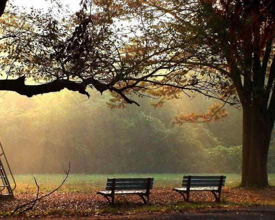 otoñopaisajes4