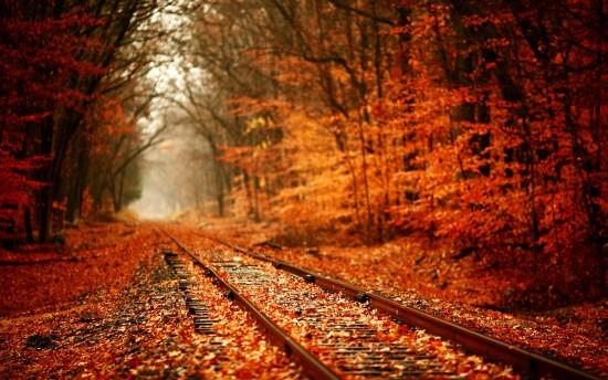 otoñopaisajes6