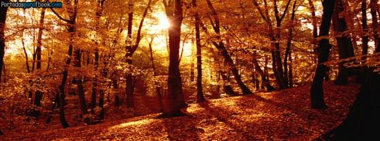 otoñoportada3