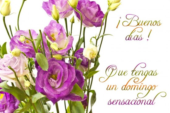 Imagenes Con Lindos Mensajes Para Desear Un Feliz Domingo