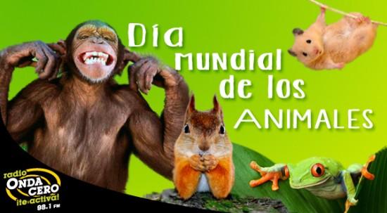 animalesmundial-jpg18
