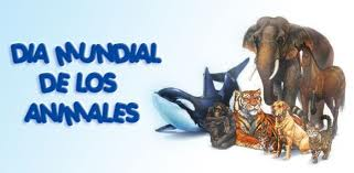 animalesmundial-jpg3