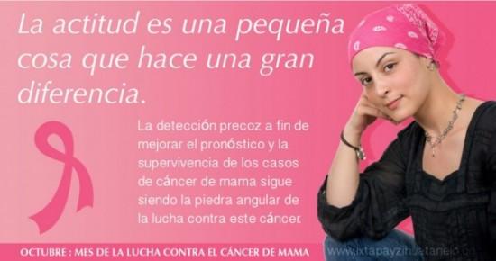 cancerdemamafrase-jpg1