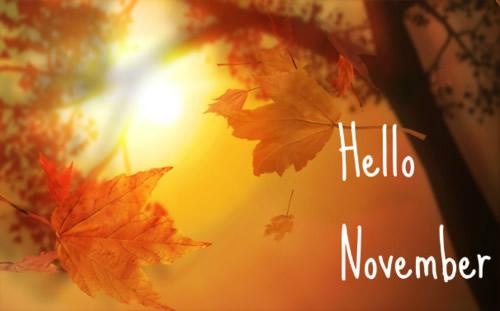 noviembrehello-jpg1