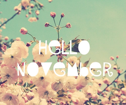 noviembrehello-jpg3