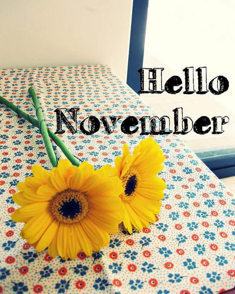 noviembrehello-jpg5