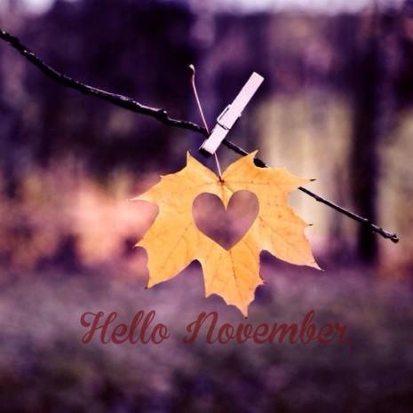 noviembrehello8