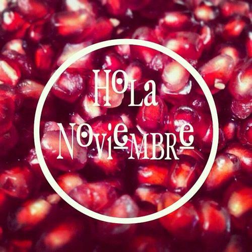 noviembrehola