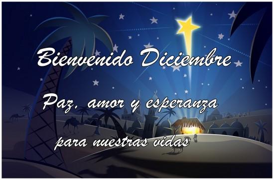 diciembrebienvenido-jpg10