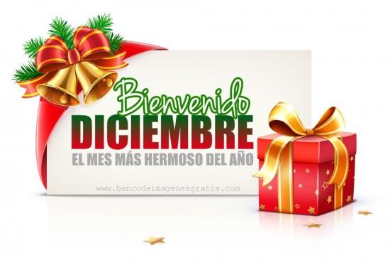 diciembrebienvenido-jpg3