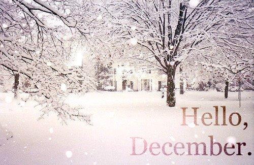 diciembrehello-jpg12