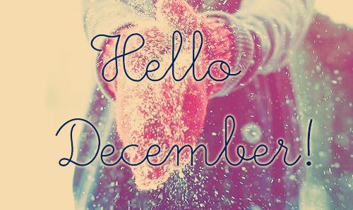 diciembrehello-jpg6