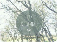 diciembrehola5