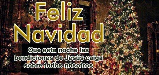 navidadcristiana-jpg14