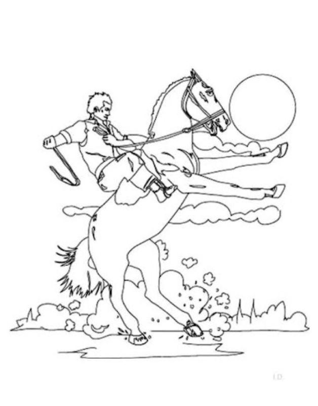 Imágenes De La Batalla De Boyacá 7 De Agosto De 1819