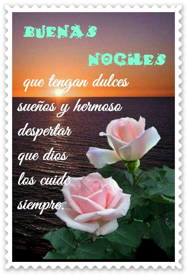 Imágenes De Flores Con Frases Bonitas Saberimagenescom