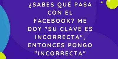 Imágenes Y Frases Chistosas Para Compartir En Facebook O Whatsapp